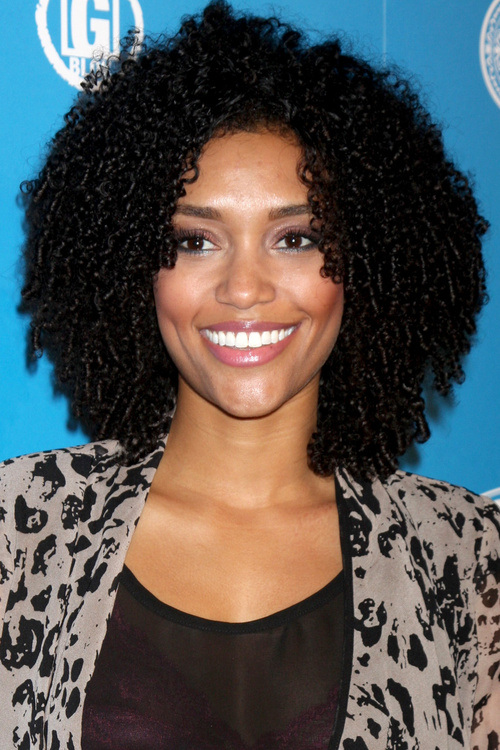 African American Natural Hairstyles For Medium Short