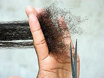 Trim Dry Hair